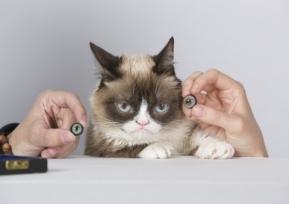 Social: Grumpy Cat แมวหน้าเครียดชื่อดังกลายเป็นหุ่นขี้ผึ้งใน Madame Tussauds! (มีคลิป)